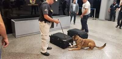 Fiscal Antidroga incautó metanfetaminas que transportaba una ciudadana europea