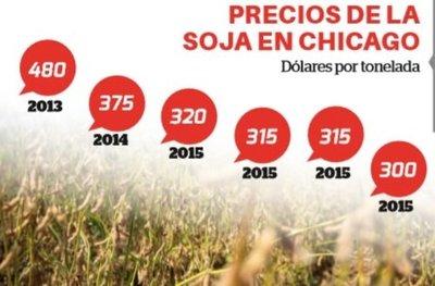 Ante caída de precios apuestan por el maíz