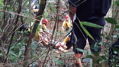 Investigan brutal caso de feminicidio en La Paloma