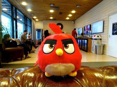 Rovio entra en la realidad aumentada con nuevo Angry Birds