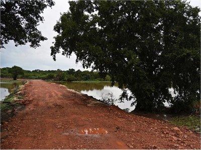 Denuncian que relleno de laguna en Piquete Cué genera inundación