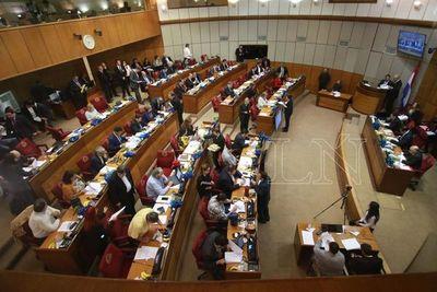 Senado posterga tratamiento de leyes para evitar lista gris de GAFI