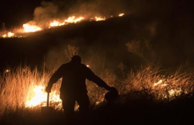 Reserva tropical arde en un incendio