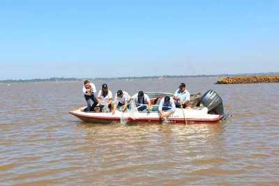 Siembran alevines en aguas del Paraná para conmemorar aniversario de Encarnación