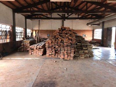 Piden prisión preventiva para supuestos responsables de cortar árboles en San Rafael
