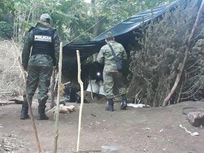 Dos detenidos y diez hectáreas de marihuana destruidas