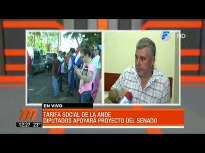 """Diputados anuncian que apoyarán Ley """"Ñande Energía"""""""