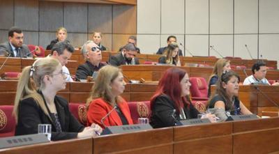La SFP participó de la reunión convocada por la comisión asesora de Derecho Humanos para las PcD de la Cámara de Senadores