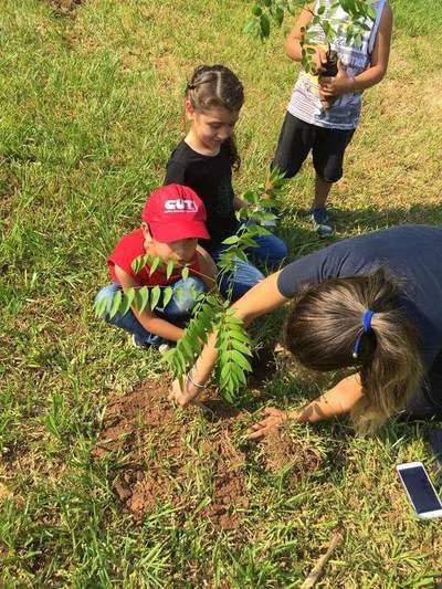 Plantemos Todos Py: Una comunidad que busca mejorar el medio ambiente