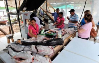 SENACSA aclara que peces del río Paraguay se pueden consumir