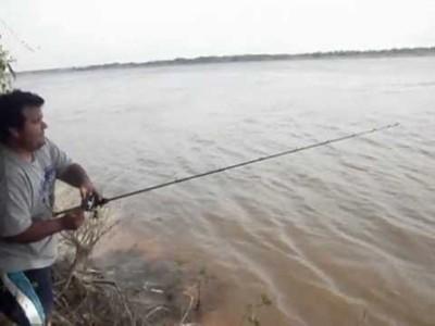 Aclaran que peces del río Paraguay se pueden consumir