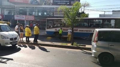 Funcionaria municipal muere arrollada por camión sin frenos
