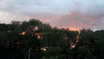 Viernes cálido y con lluvias – Prensa 5