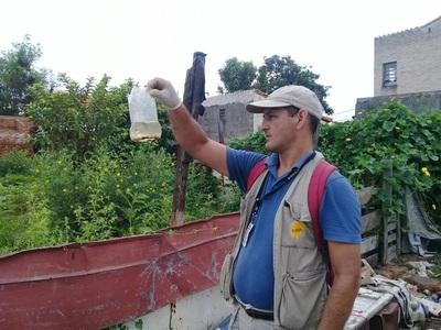 Salud reporta aumento de notificaciones por dengue