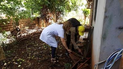 DESESPERANTE: Suman 1.352 casos de dengue en Alto Paraná