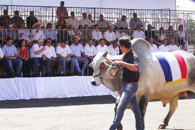 Expo Canindeyú: los organizadores anunciaron haber superado las expectativas en cantidad de público y negocios concretados