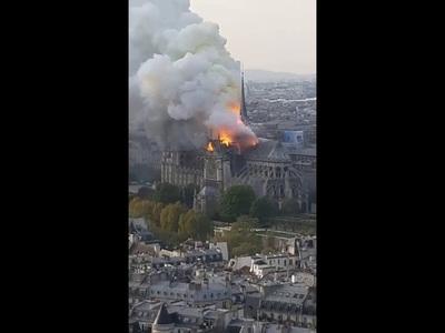 Catedral de Notre Dame guardaba la corona de espinas de Jesús