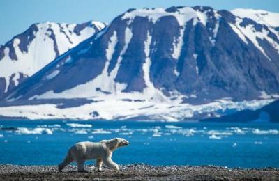 Canadá sufre consecuencias del calentamiento global dos veces mayor que el resto del mundo