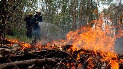 Brigadas intentan controlar tres incendios forestales en Guatemala
