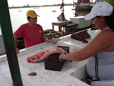Buen movimiento de venta de pescado en Semana Santa, según comerciantes