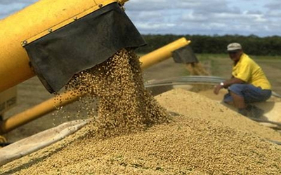 Sequía causa pérdida de USD 1.000 millones en el sector sojero