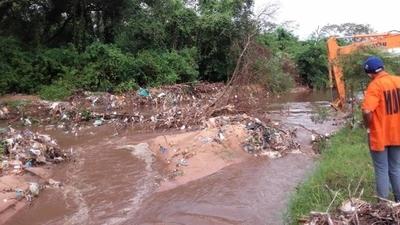 15 toneladas de basura en 2 km de arroyo: cubiertas, residuos domiciliares que tira la gente