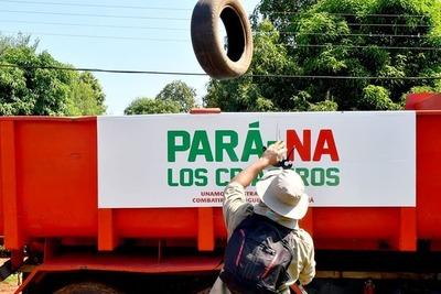 Eliminan cerca de 45.000 criaderos en Alto Paraná