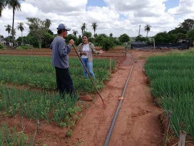 Modernización de agricultura familiar genera ingresos de US$ 5,3 millones a beneficiarios