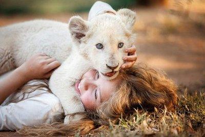 Mi mascota es un león (2D)