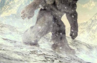 Revelan a quién podrían pertenecer las 'huellas del yeti' encontradas en el Himalaya