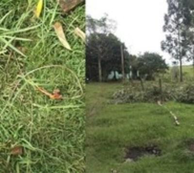 Niño de 8 años muere electrocutado tras tocar un cable suelto