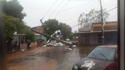 Tormenta dejó más de 50 árboles caídos en San Lorenzo