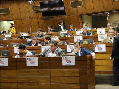 Ñane Energía: Reducción de tarifa de la ANDE dependerá del Gobierno de turno