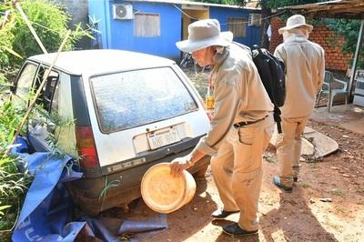 Siguen trabajos de rastrillaje para eliminar al Aedes aegypti en Alto Paraná