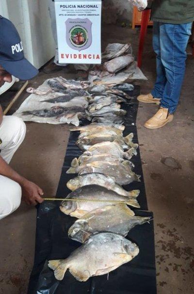 Decomisan pescados sin medidas mínimas y piezas faenadas de animales silvestres