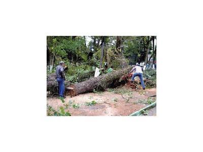 Caacupé también quedó con secuelas del último temporal