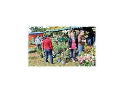Feria de flores para  mamá en Caacupé