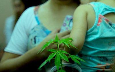 Senad quiere 20 años de cárcel para mamás que promueven uso medicinal del cannabis