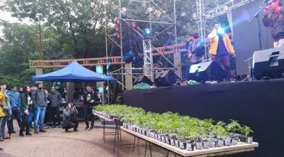 HOY / Reclamarán ante el Congreso, cultivo solidario de marihuana terapéutica
