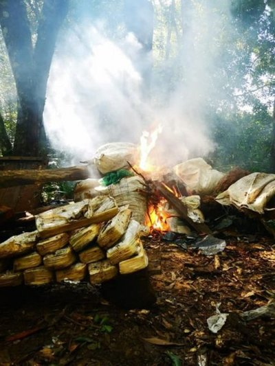 Caaguazú: desmantelan campamento narco