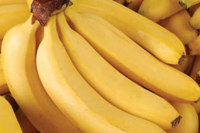Productores de banana exigen que se cumpla la ley