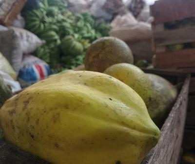 Campesinos donan más de 9.000 kg. de alimentos a damnificados