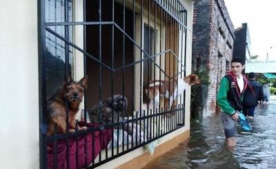 HOY / Río volvió a crecer en Pilar, pero se mantiene la alerta amarilla
