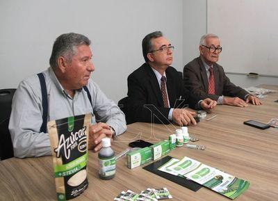Señalan la necesidad de mayor cultivo y consumo de la stevia
