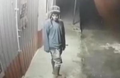Solitario delincuente fue grabado robando un comercio de San Miguel