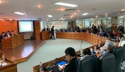 El tema se debatirá hoy en sesión de la Junta Municipal