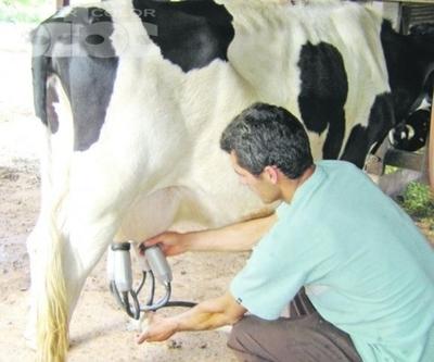 Producción y consumo de lácteos