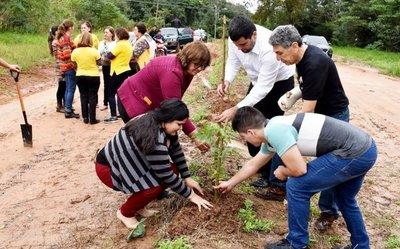 Plantan arbolitos en plazas y avenidas de San Estanislao