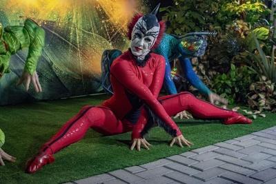 Multicolorido espectáculo del Cirque Du Soleil Ovo, en Paraguay