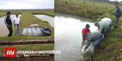 SIEMBRAN ALEVINES EN ESTANQUES DE COMUNIDADES INDÍGENAS DE ITAPÚA